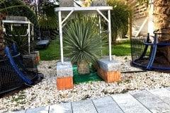 18-09-Yucca rostrata 02