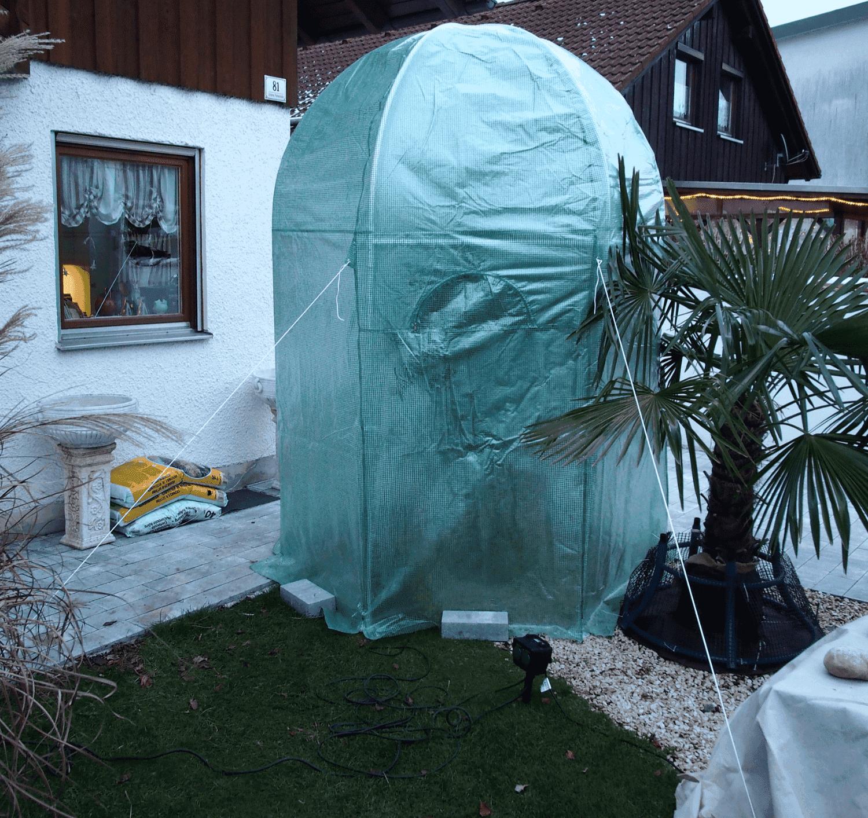 Praxistest im Garten: Winterschutzzelt (EcoPalms) 1