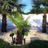 Herkunft winterharter exotischer Pflanzen 5