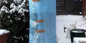 Winterschutz von Exoten: Varianten